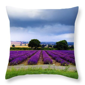Hampshire Lavender Field Throw Pillow