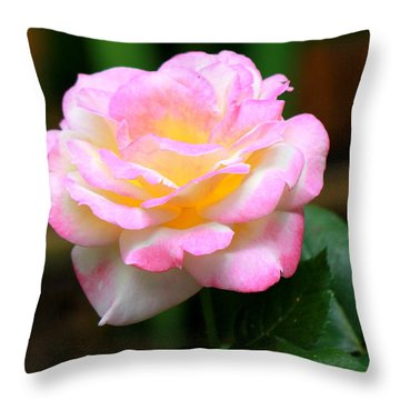 Hand Picked For You Throw Pillow by Deborah  Crew-Johnson