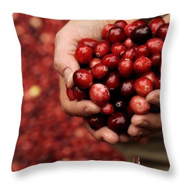 Handful Of Fresh Cranberries Throw Pillow