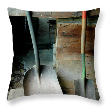 Throw Pillow featuring the photograph Handled And Raked by Christiane Hellner-OBrien