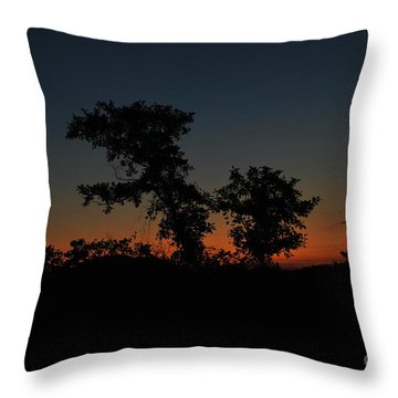 Throw Pillow featuring the photograph Sense Of Freedom by Erhan OZBIYIK