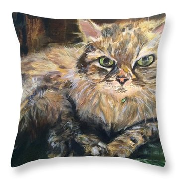 Handsome Toby Throw Pillow