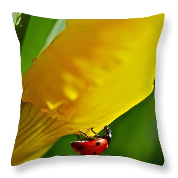 Hang On Throw Pillow by Bill Owen