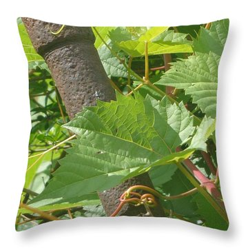 Hang Tight Throw Pillow