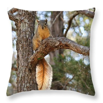 Throw Pillow featuring the photograph Hangin' Out by Christy Pooschke