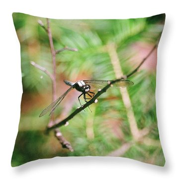 Throw Pillow featuring the photograph Hangin' Out by David Porteus