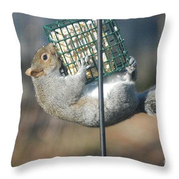 Throw Pillow featuring the photograph Hangin Out by Mark McReynolds
