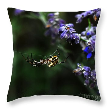 Hanging By A Thread Throw Pillow by Karen Slagle