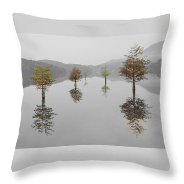 Throw Pillow featuring the photograph Hanging Garden by Debra and Dave Vanderlaan
