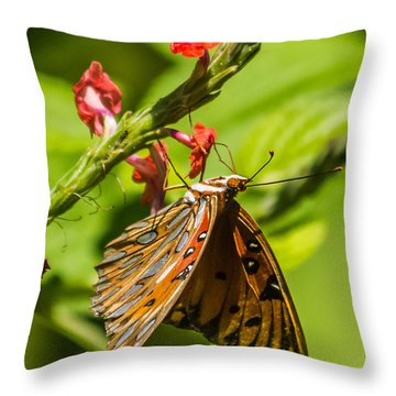 Hanging Off The Side Throw Pillow by Jane Luxton