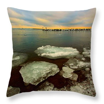 Throw Pillow featuring the photograph Hanging On by Amanda Stadther