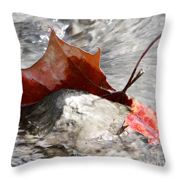 Throw Pillow featuring the photograph Hanging On By Faith by Anita Oakley