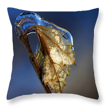 The Last Leaf  Throw Pillow by Debbie Oppermann