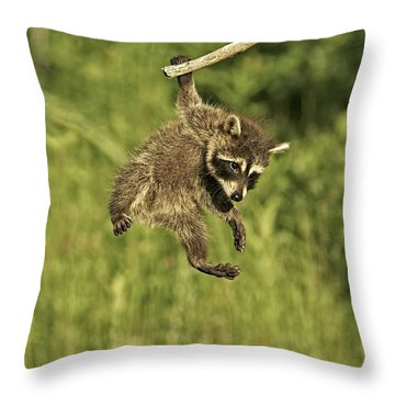 Hanging Out Throw Pillow by Jack Milchanowski