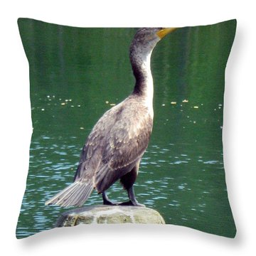Hanging Out Lakeside Throw Pillow