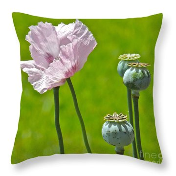 Throw Pillow featuring the photograph Hanging Out With My Buds by Eve Spring