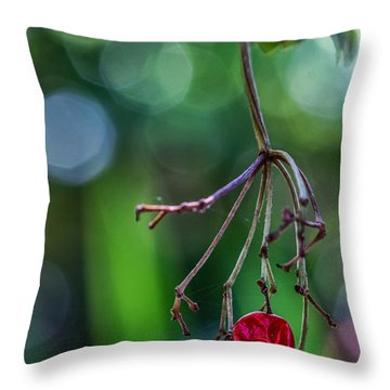 Hanin On In Reno Throw Pillow