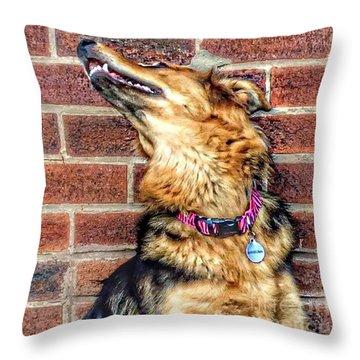 Hannah #gsd #germanshepherd Throw Pillow