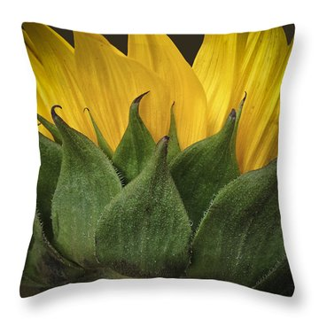 Happiness Throw Pillow by Deborah Klubertanz