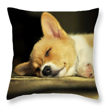 Happiness Is A Warm Corgi Puppy Throw Pillow