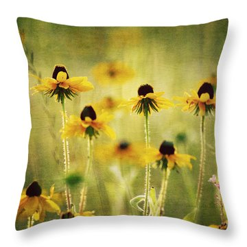Happiness Throw Pillow by Joan McCool