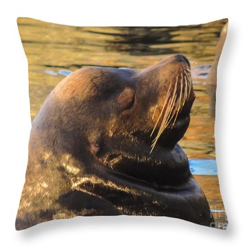 Happy And Content Throw Pillow
