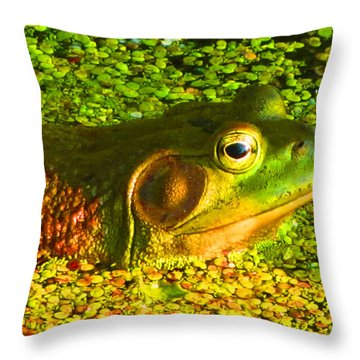 Happy As A Frog In A Pond Throw Pillow