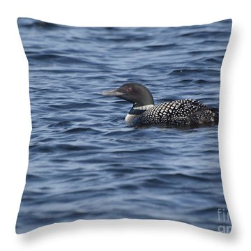 Happy As A Loon Throw Pillow