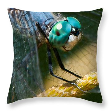 Happy Blue Dragonfly Throw Pillow