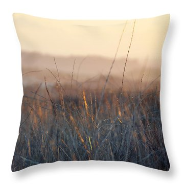 Throw Pillow featuring the photograph Happy Camp Canyon Magic Hour by Kyle Hanson