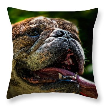 Happy Dog Throw Pillow by Bob Orsillo