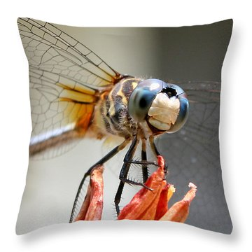 Throw Pillow featuring the photograph Happy Dragonfly by William Selander