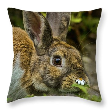 Happy Easter Throw Pillow by Anne Rodkin
