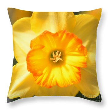 Happy Face Throw Pillow by Kathleen Struckle