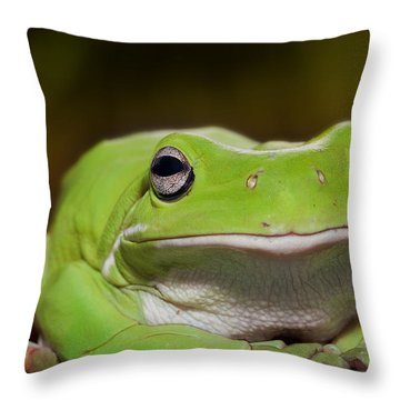 Happy Frog 0003 Throw Pillow by Kevin Chippindall
