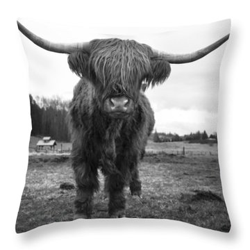 Happy Highland Cow Throw Pillow by Sonya Lang
