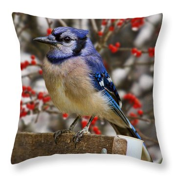Throw Pillow featuring the photograph Happy Holidays by Gary Holmes