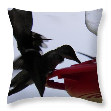 Throw Pillow featuring the photograph Happy Hour by Nick Kirby