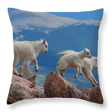 Happy Landing Throw Pillow
