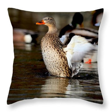 Happy Mallard Duck Throw Pillow