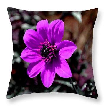 Happy Single Juliet Throw Pillow by Deena Stoddard