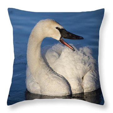 Happy Swan Throw Pillow by Patti Deters
