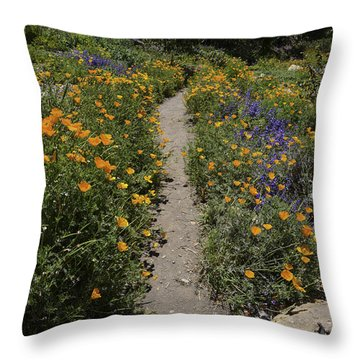 Happy Trails Throw Pillow by Lynn Bauer