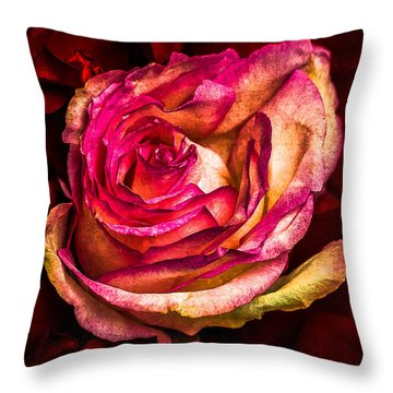 Happy Valentine's Day - 1 Throw Pillow by Alexander Senin