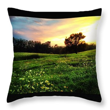 Happy Valley Throw Pillow