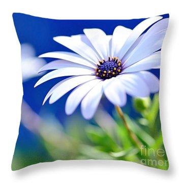 Happy White Daisy 2- Blue Bokeh  Throw Pillow by Kaye Menner