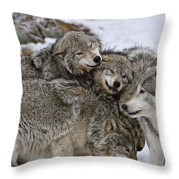 Throw Pillow featuring the photograph Happy Wolf Pack by Wolves Only