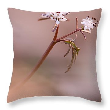 Harbinger Of Spring Throw Pillow