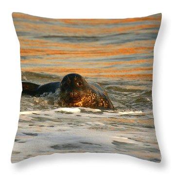 Throw Pillow featuring the photograph La Jolla Seal Sunset by John F Tsumas