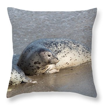 Harbor Seals In The Surf Throw Pillow
